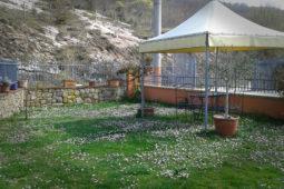 Il grande giardino